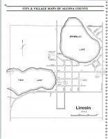 Map Image 025, Alcona County 1995